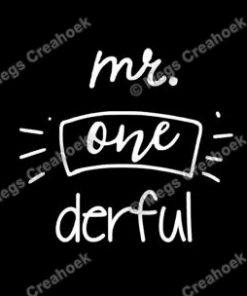 Strijkapplicatie: Mr one derful (vaantje)