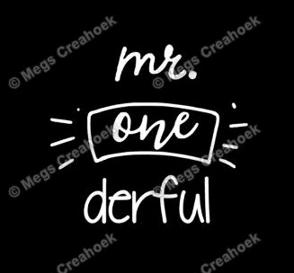 Strijkapplicatie: Mr one derful (vaantje)